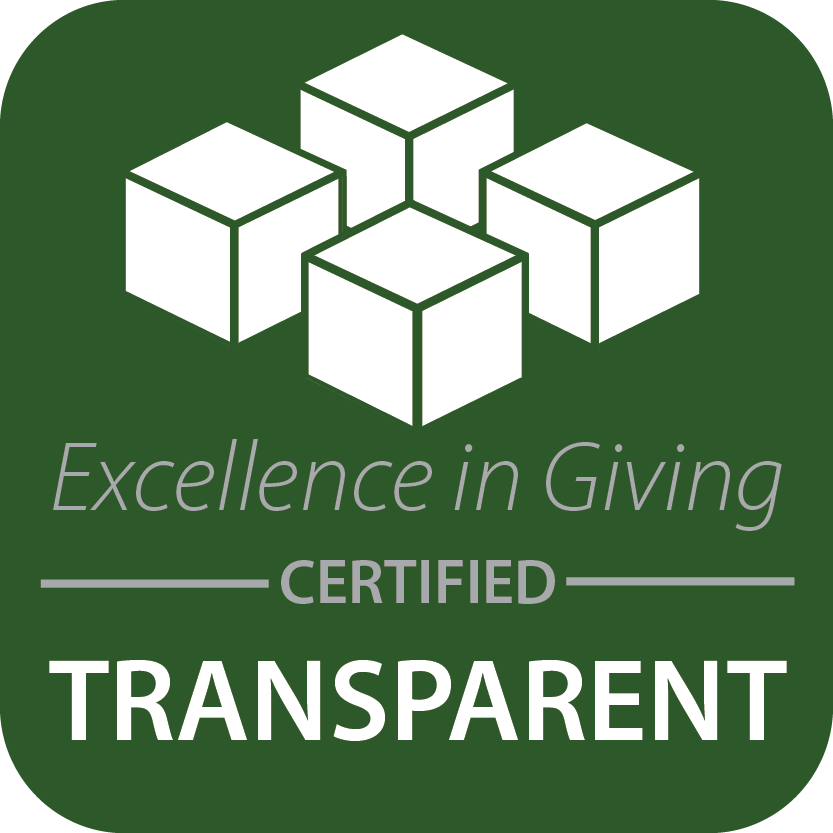 excellence in giving certified seal